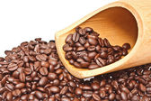 Coffee beans on a white background — Stock Photo