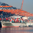 Harbor container ships — Stock Photo #11418574