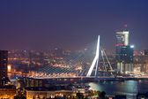 Rotterdam Erasmus bridge — Foto Stock