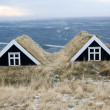 Iceland houses - Stock Photo