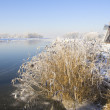 Frozen Holland — Stock Photo #11452871