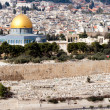 Jerusalem - Israel — Stock Photo #11452995