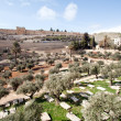 Graves - Jerusalem — Stock Photo #11453371