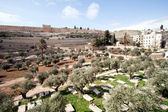 Graves - Jerusalem — Stock Photo