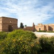 Stock Photo: El Badi Palace