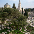 Mt Zion - Jerusalem — Stock Photo #11546384