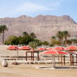 Stock Photo: Ein Gedi - Israel