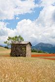 Provence - France — Stock Photo