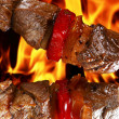 Barbecue on flaming hot — Stock Photo #11447697