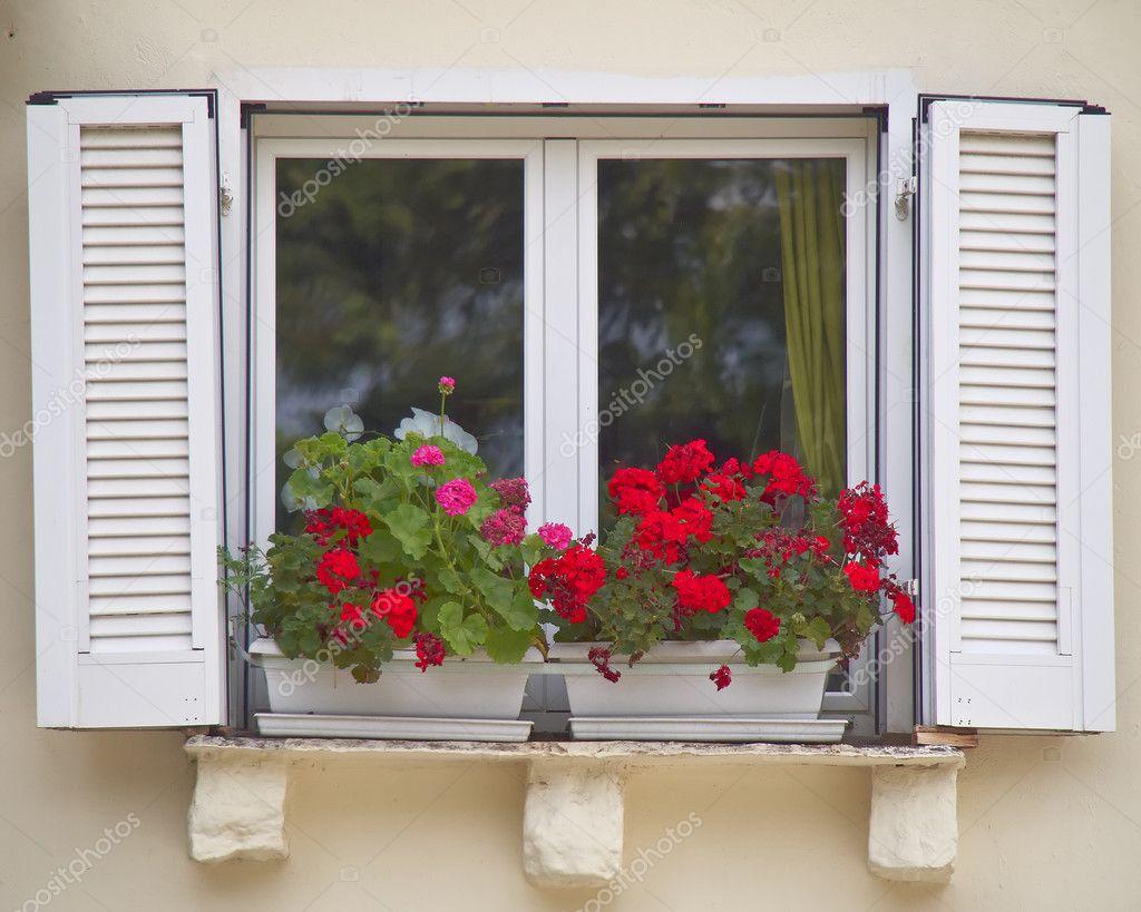 Finestra con vaso di fiori di geranio foto stock for Finestra con fiori disegno