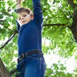Boy climbs on a tree - Stock Photo