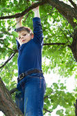 Boy climbs on a tree — Stock Photo
