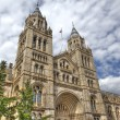 Stock Photo: Natural History Museum London