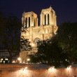Notre Dame at Night — Stock Photo #11756280
