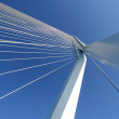 Erasmusbridge Rotterdam — Stock Photo
