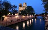 在晚上的巴黎圣母院 — 图库照片