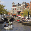 Summer in Leiden, Holland — Stock Photo