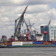 Containerschip in de Rotterdamse haven - Lizenzfreies Foto