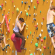 Climbing Wall — Stock Photo #12258047