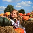 Girl with a pumpkins - Stock Photo