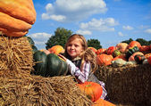 Girl with a pumpkins — Stok fotoğraf