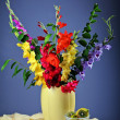 Colorful  gladioluses - Stock Photo
