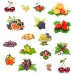 Fresh berries — Stock Photo #11426345