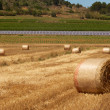Royalty-Free Stock Photo: Bales and panels