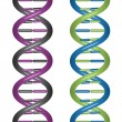 Royalty-Free Stock Vector Image: Seamless DNA