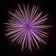 Firework - Stock Vector
