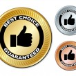 Best choice guaranteed labels — Stock Vector #11495572