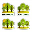 Natural tree forest stickers — Stock Vector