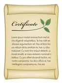 Vecchio certificato bio — Vettoriale Stock