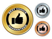 Best choice guaranteed labels — Stock Vector
