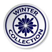 冬コレクション ステッカー — ストックベクタ