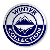 冬天集合贴纸 — 图库矢量图片