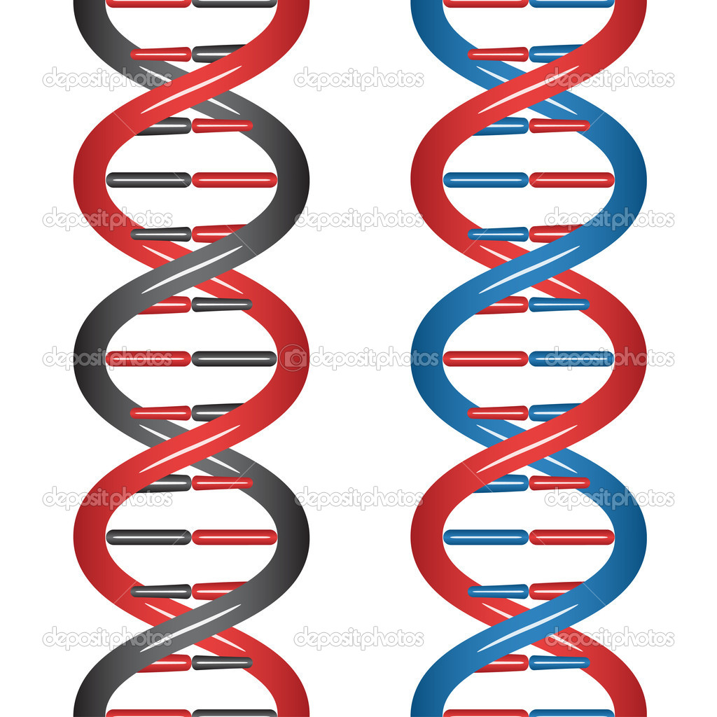 Seamless DNA - illustration for the web — Stock Vector #11493141
