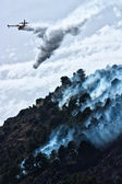 Firefighter aircraft throw water to extinguish a forest fire — Stock Photo