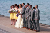 Wedding Party Takes Picture At Edge Of Lake Michigan — Stock Photo