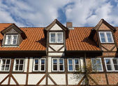 Dormers on a roof — Stock Photo