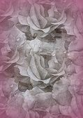 Texture with roses blossoms — Stock Photo