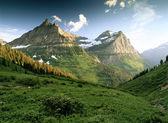 Beautiful Alps. — Photo