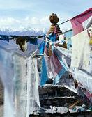 Himalayas. — Stock Photo