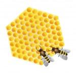 Vector - working bees on honeycomb — Stock Vector