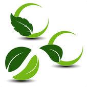 Vektor naturliga symboler med blad — Stockvektor