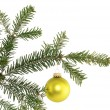 Stock Photo: Fir branch with christmas decoration