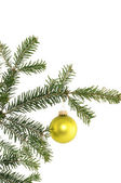 Fir branch with christmas decoration — Stockfoto