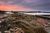 Rocky coast — Stockfoto