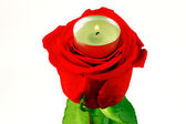 Rose and Candle — Stock Photo
