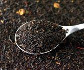 Black tea — Foto Stock